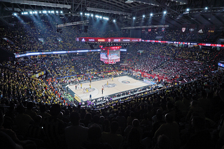 Leading sports segment: Olympique Lyonnais, Sevilla FC and the Sinan Erdem Arena in Istanbul