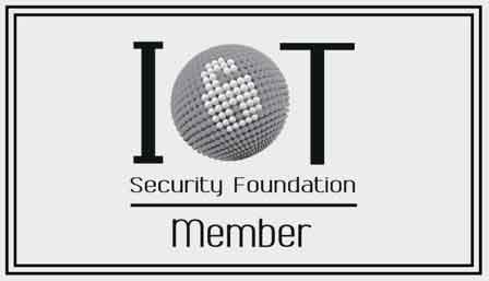 IoT Security Champion of the year 2019 logo