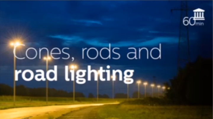 Mesopic Vision and Road Lighting