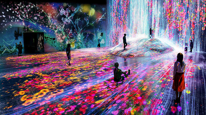 Immerse yourself in the borderless world of digital art with teamLab Borderless