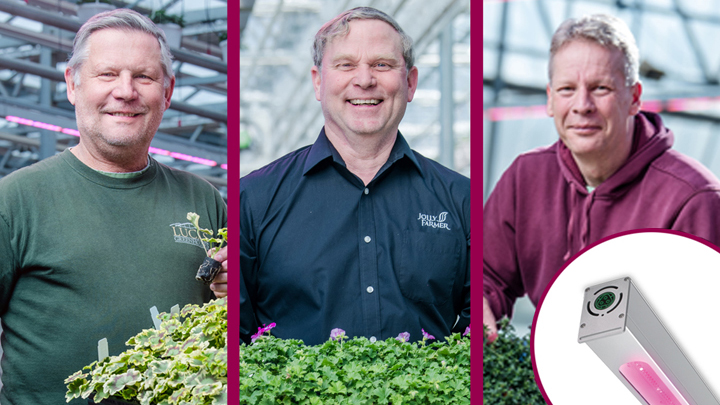 Three leading young plant propagators talk about their outstanding results growing under Philips LED toplighting